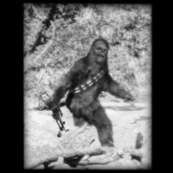 bigfoot-chewbacca-t-shirt-geekalerts