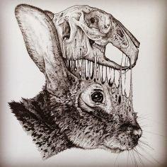animal-skull-drawings-paul-jackson-13