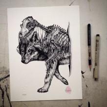 animal-skull-drawings-paul-jackson-16