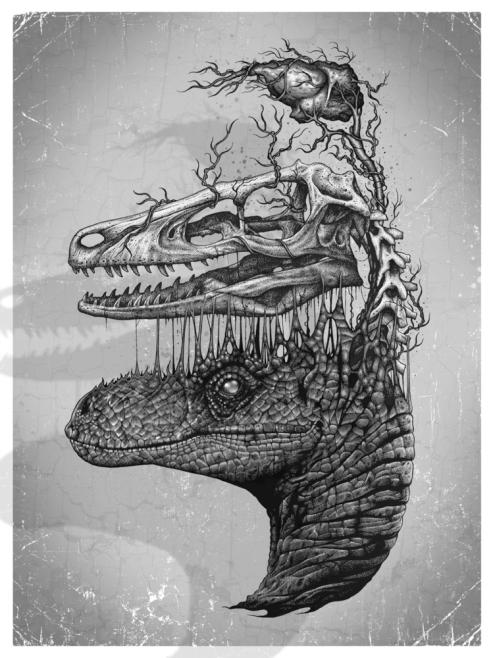 Raptor_print